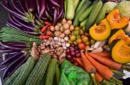 Tiêu thụ nông sản vẫn khó vì mỗi địa phương một quy định