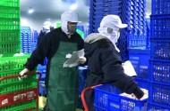 Chủ tịch FFA: Cần xây dựng hệ thống kho lạnh hiện đại bảo quản nông sản